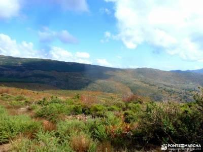 Dehesa Bonita-Abedular Somosierra;pico del alba rutas senderismo la rioja rutas vall de nuria